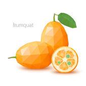 Polygonal fruit - kumquat. Vector illustration — Stock Vector