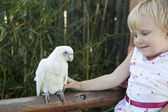 Girl and Parrot — Stock Photo