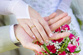 Two hands of a just married couple — Stock Photo