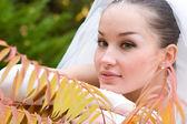 Wedding in autumn — Stock Photo