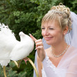 Stock Photo: Bride and white pigeon