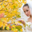 Royalty-Free Stock Photo: Bride in autumn