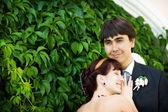 Portrait of bride and groom — Stock Photo
