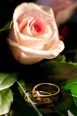 Rings and flower — Stock fotografie