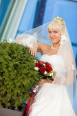 Bride by the wall — Stock Photo
