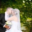 Kiss of bride and groom - Stock fotografie