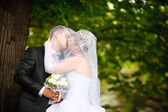 Kiss of bride and groom — Stock Photo