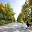 Bride and groom crossing the road - Stock Photo