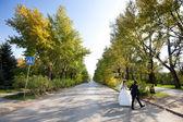 Nevěsta a ženich přes silnici — Stock fotografie