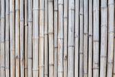 Background of bamboo — Stock Photo