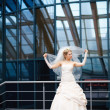 Bride and veil - Stock fotografie