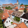 Roofs of Cesky Krumlov - Stock Photo