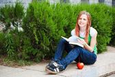 Student with books and apple — Stock Photo