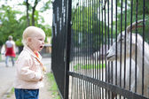 Child in the zoo — Stock Photo
