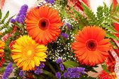 Bright flowers — Stock Photo