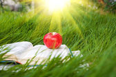 Sun over the book with apple — Stock Photo