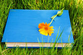 Flower on the book — Stock Photo