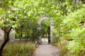 Road to the gate — Stock Photo