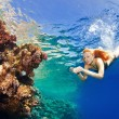 Corals in the sea — Stock Photo