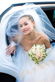 The most beautiful bride — Stockfoto