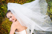 Bride with fly veil — Stock Photo