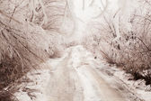 Winter road toned in sepia — 图库照片