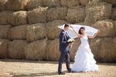 Wedding couple near the hay — Stock Photo