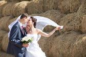 新婚夫妇附近干草 — 图库照片