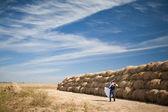 Sposi nel campo — Foto Stock