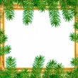 The spruce branches in a wooden frame — Stock Photo #36257093