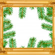 The spruce branches in a wooden frame — Stock Photo #36257095