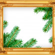 The spruce branches in a wooden frame — Stock Photo #36257133