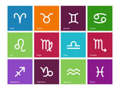 Zodiac icons on color background. — Stock Vector