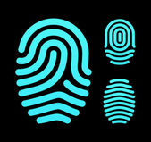 Fingerprint types, loop, whorl and arch. — Stock Vector