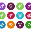 Gender identities circle icons on white background. — Stock Vector