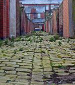 Patrząc w dół aleja brukowiec inner city — Zdjęcie stockowe