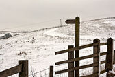 Blank wooden signpost on snow covered moorland — ストック写真