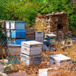 Beehives being stored — Stock Photo #21110119
