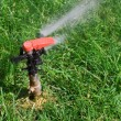Stock Photo: Garden lawn water sprinkler