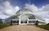 сефтон парк palm дом, ливерпуль, англия — Стоковое фото
