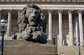 Lion statue in front of St Georges Hall, Liverpool, UK — Stock Photo