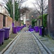 Rubbish bins lined up in narrow cobblestoned alley — Stock Photo