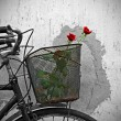 Red roses in basket of old rusty bicycle — Stock Photo