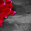 Red rose petals on a rustic wooden background — Stock Photo