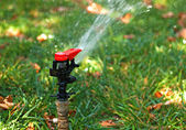 Automated garden lawn sprinkler — Stock Photo