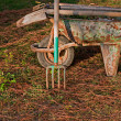 Gardening tools in old rusty wheelbarrow2 — 图库照片