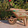 Gardening tools in old rusty wheelbarrow — Stock Photo