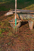 Gardening tools in old rusty wheelbarrow2 — Foto Stock