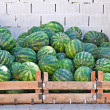 Crates of watermelons — Stock Photo