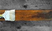 Coloración de un pedazo de madera — Foto de Stock